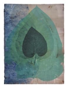 Botanical Transfer Print